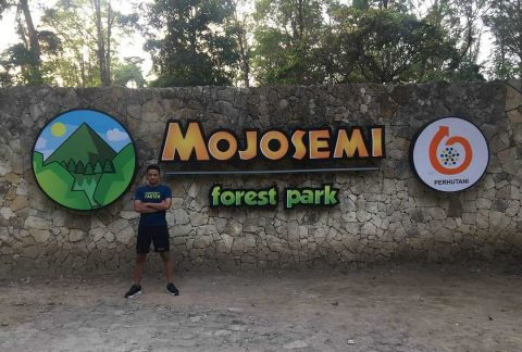 Mojosemi Forest Park